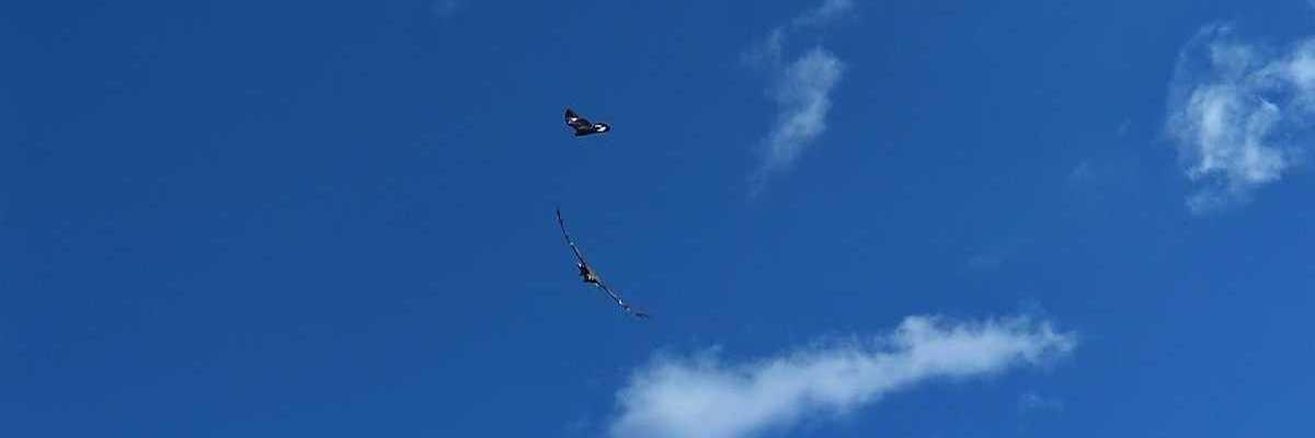 Flugwegposition um 12:31:44: Aufgenommen in der Nähe von Département Alpes-de-Haute-Provence, Frankreich in 2352 Meter